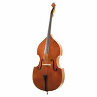 Double Bass white background