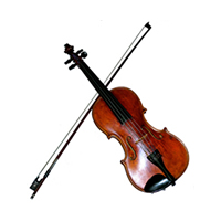Violin white background