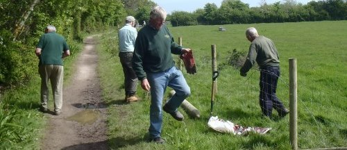 Volunteers working on fencing