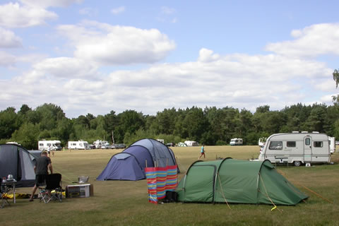 tents and caravans on a campsite