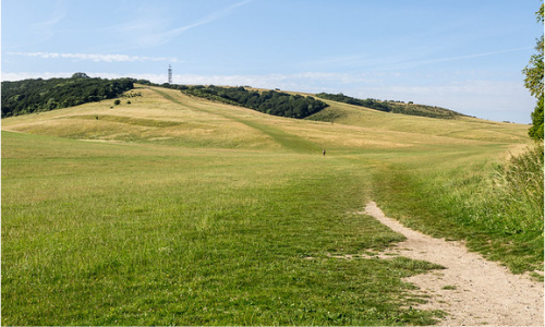 A hill in the South Downs