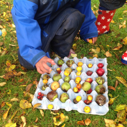 Children assembling a tray of fruit for birds