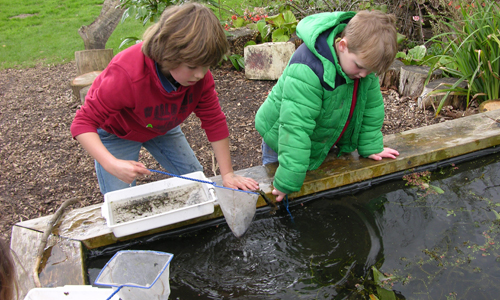 Children's activities at Sir Harold Hillier Gardens