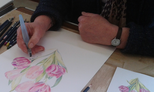 Leisure workshops at Sir Harold Hillier Gardens
