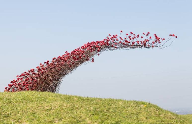 Wave poppy sculpture - Photo credit Graham Moore
