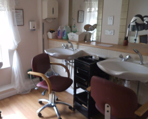 Fleming House salon